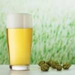 شراب الشعير الصحي