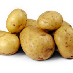 عمل حشوة البطاطا والكزبرة